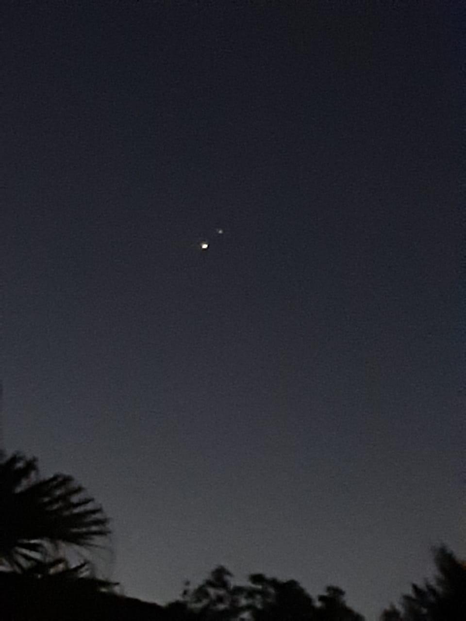 Giove e Saturno tra le Cicadee